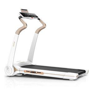 نمایندگی تردمیل تاشو Fitness Mini 5